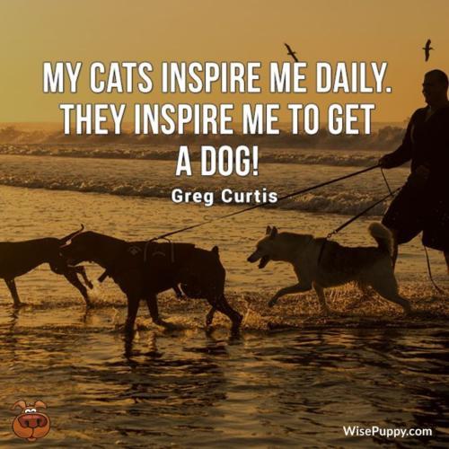 Dog_Quote_208