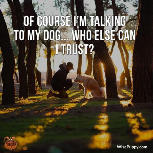 Dog_Quote_220