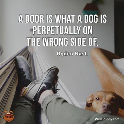 Dog_Quote_221
