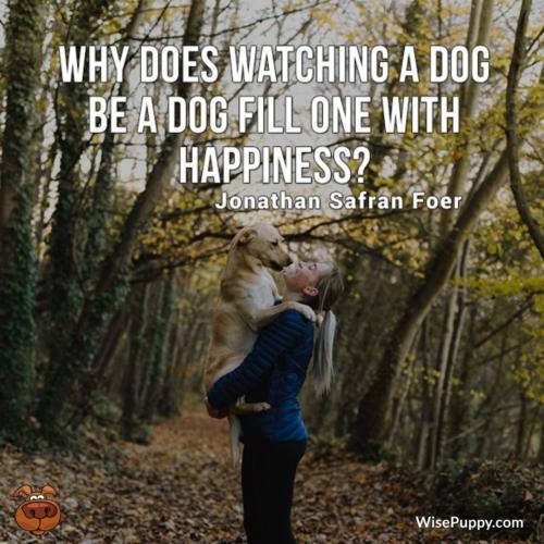 Dog_Quote_225